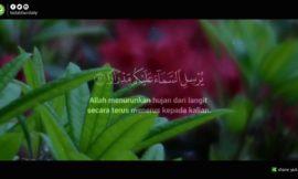 Tadabbur Surah Nuh Ayat 11-13