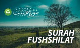 Pahami Artinya. MasyaAllah – Tadabbur Surah Fushshilat ayat 30-36