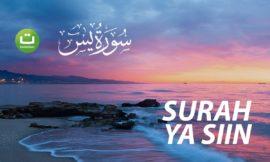 Surah Ya-siin Full Terjemah – سورة يس