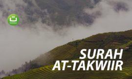 Surah At-Takwiir Full Terjemah – Abu Usamah Syamsul Hadi