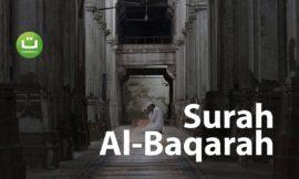 Tadabbur Surah Al Baqarah 17-26 ᴴᴰ – Hani Ar-Rifa'i