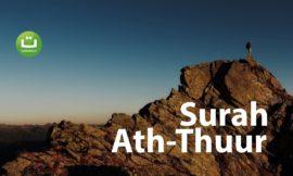 Surah Ath Thuur ᴴᴰ – Hani Ar-Rifa'i