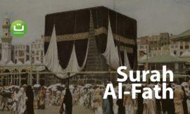 Surah Al-Fath ᴴᴰ – Hani Ar-Rifa'i