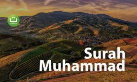 Tadabbur Surah Muhammad – Hazza Al Balushi