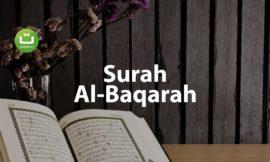 Juz 1 Surah Al Baqarah سورة البقرة – Abu Usamah ᴴᴰ