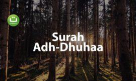 Tadabbur Surah Adh Dhuhaa Merdu – Salah Mussaly ᴴᴰ