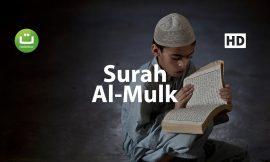 Surah Al Mulk Menyejukkan – Salah Mussaly ᴴᴰ