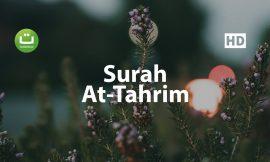 Tadabbur Surah At Tahrim – Mishari Rasyid Al-Afasy ᴴᴰ